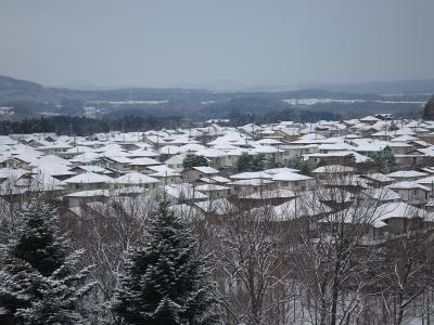 12/18雪景色