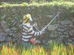 石垣除草中