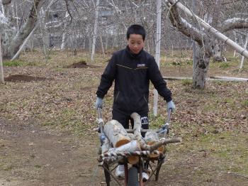 焚き木運び