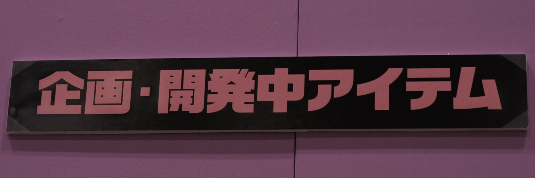 DSC_0691_01.jpg