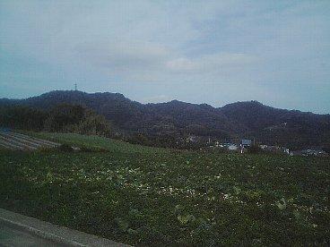 三浦富士 砲台山 武山