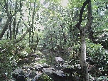 arisugawanomiya kouen 2