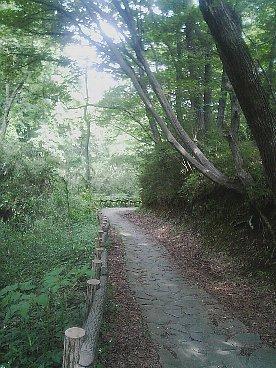 naganuma kouen 2
