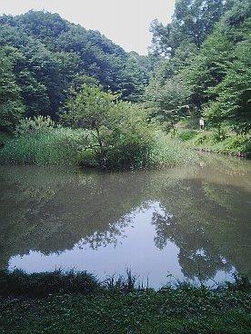 oyamada ryokuchi 4