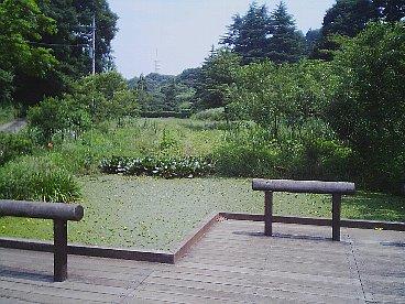 oyamada ryokuchi 7