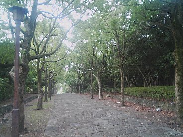 tomioka hachiman 3