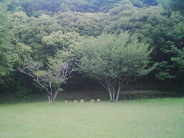 tomioka hachiman 4
