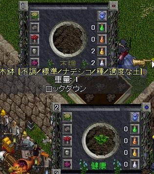 WS004319.JPG