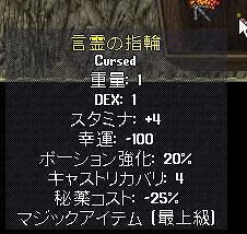 WS004348.JPG