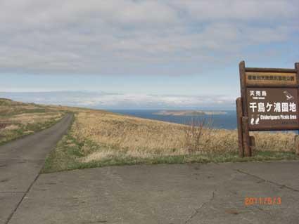 20110503a.jpg