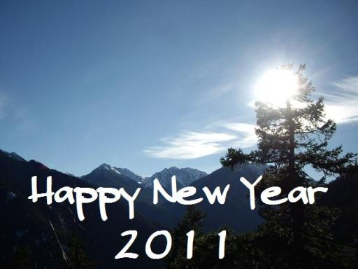 Happy New Year2011