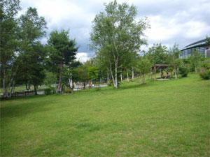 20060720-3.jpg