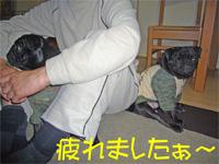 20061125takibi38.jpg
