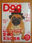 dogworld.jpg