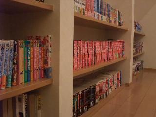 a_bookshelf.jpg