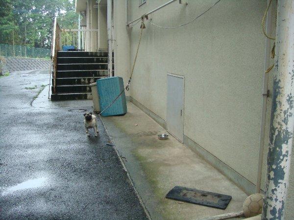 8月東葛飾支所コピー0017