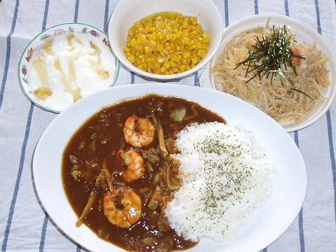 2008911カレーの夕ご飯