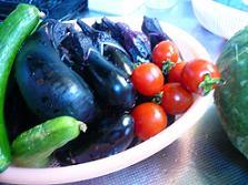 淡路産 夏野菜