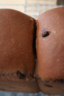 チョコ山食xX