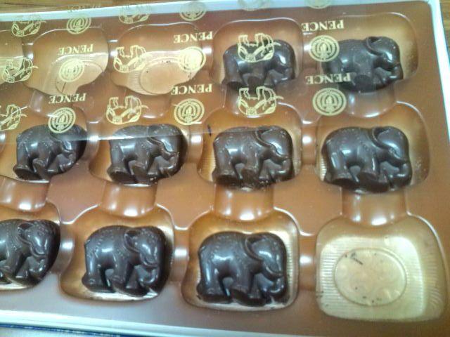 象さんの形のチョコレート