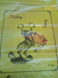 ミッキー本物かな
