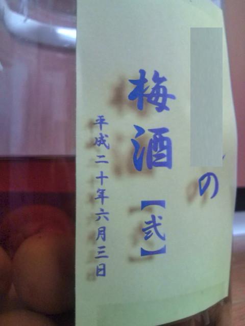 梅酒その壱