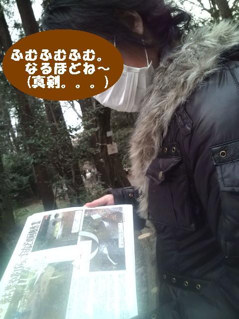 井の頭公園を復活させよう記事