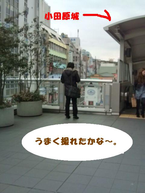 小田原城を撮影中の旦那ちんの背中