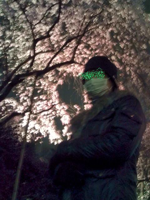 夜桜と旦那ちん-2