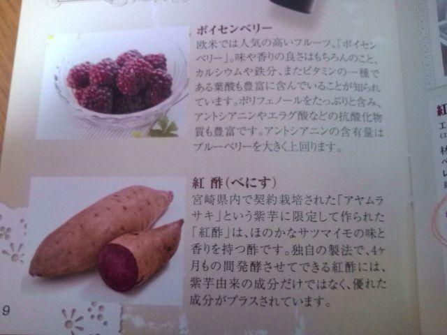 ベリー&紅酢の説明2