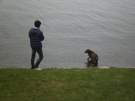 Cobourg カルア(犬)とティーケーlm