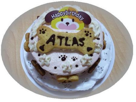 atlas_cake.jpg
