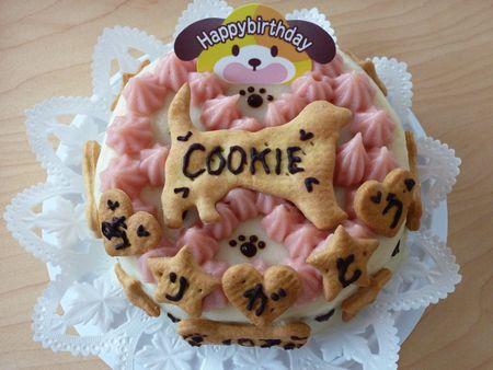 cookie_cake1.jpg