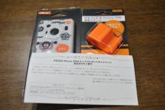 110502-204623-DSC_9953.jpg