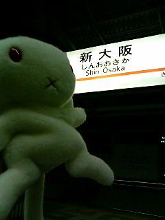 「大阪ですようさぎさん」「そうやな。そしてまだまだ地方都市に遠征するんやでぇ~」「な、なんで口調が違うんすかうさぎさんー!」