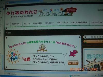 CIMG5139_convert_20100515081528.jpg