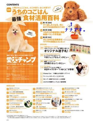 champ_index_00000000219_convert_20101025132742.jpg
