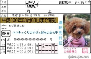 decojiro-20110125-145549.jpg