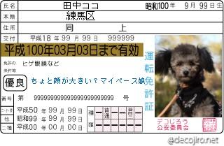 decojiro-20110125-145715.jpg