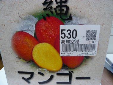 P1060737.jpg