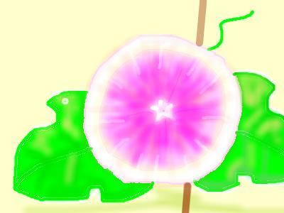 snap_todokekoe_200984201347.jpg