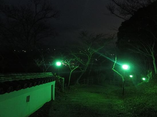 DSC00812c.jpg