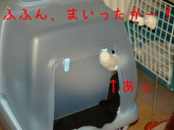 11_20080929223219.jpg