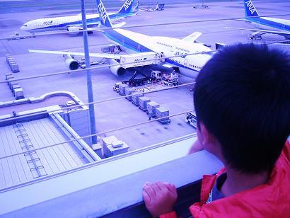 23-10-08羽田空港 (5)