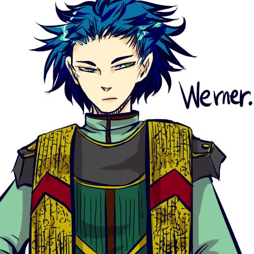 伝:ヴェルナー