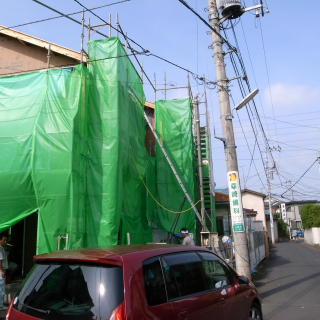 2008081903.jpg