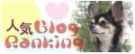 応援よろしくです〜♪人気blogランキングへ
