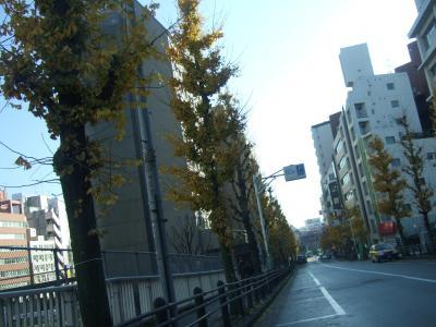 画像11+012_convert_20081219105103