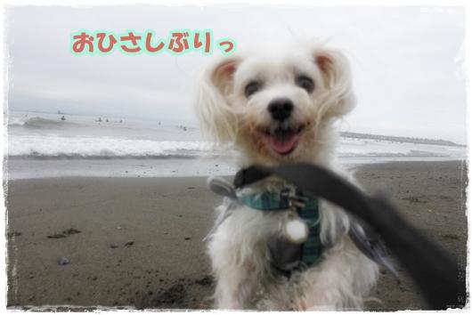 IMG_7125-1.jpg