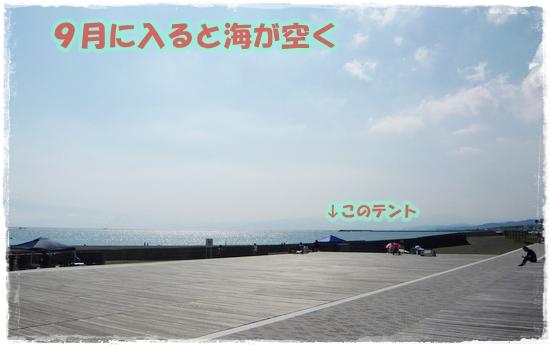 P1380010-1.jpg